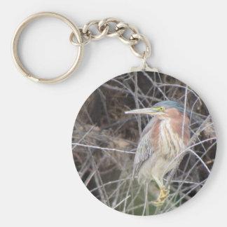 Green Heron Keychain