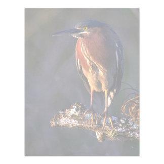 Green heron letterhead