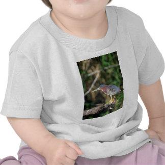 Green Heron Tee Shirt