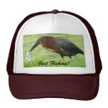 Green Heron with fish Hat