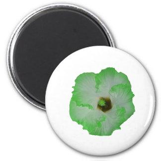 Green hibiscus flower 2 inch round magnet
