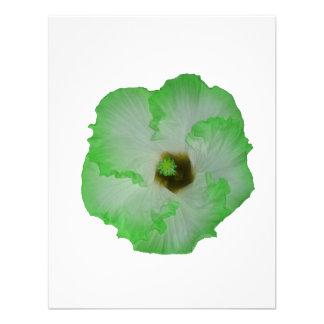 Green hibiscus flower announcement