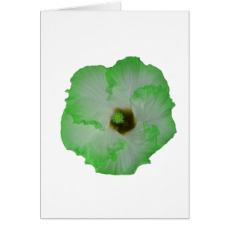 Green hibiscus flower greeting card