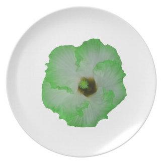 Green hibiscus flower plates