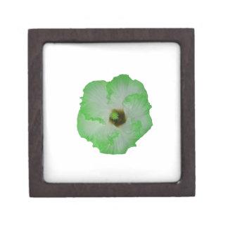 Green hibiscus flower premium trinket boxes