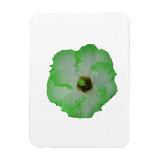 Green hibiscus flower rectangular photo magnet