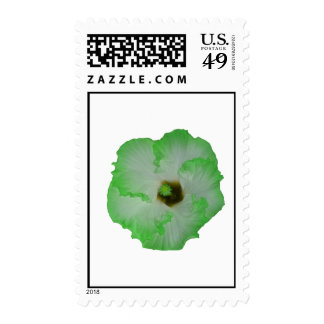 Green hibiscus flower stamps