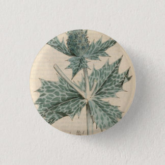Green Holly Pinback Button