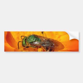 Green Hornet Bumper Sticker