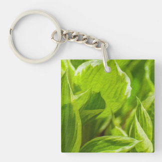Green Hosta Leaves Single-Sided Square Acrylic Keychain