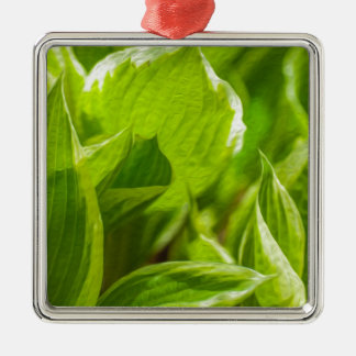 Green Hosta Leaves Metal Ornament