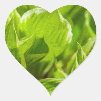 Green Hosta Leaves Heart Sticker