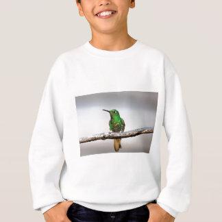 Green Hummingbird Cocora Valley Colombia Sweatshirt