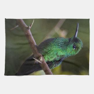 Green hummingbird Costa Rica Hand Towel