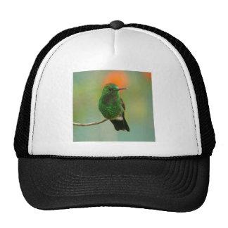 Green Hummingbird Trucker Hats
