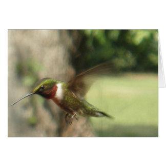 Green Hummingbird in Flight Wildlife Photo Greeting Card