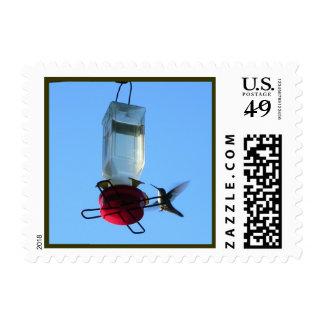 Green Hummingbird Postage Stamp