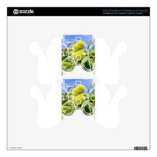 Green husks and leaves of sweet chestnut tree PS3 controller skins