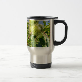 Green husks and leaves of sweet chestnut tree travel mug