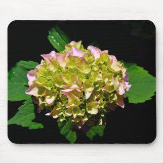 Green Hydrangea Mouse Pad