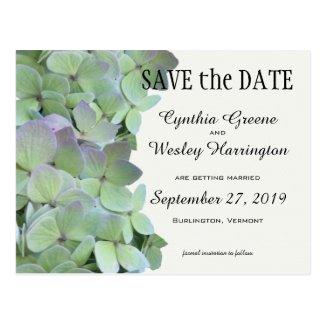 Green Hydrangea Wedding Save the Date Postcards Postcard
