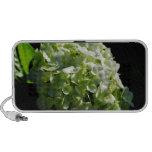 Green Hydrangeas Flowers Mini Speaker