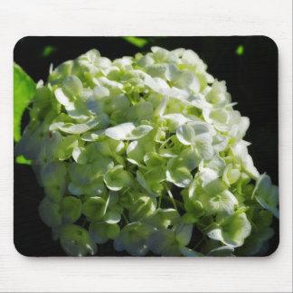 Green Hydrangeas Flowers Mouse Pad