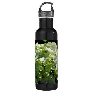 Green Hydrangeas Flowers Stainless Steel Water Bottle