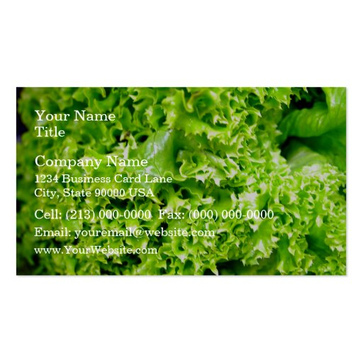 Green Hydroponic lettuce leaves Business Card