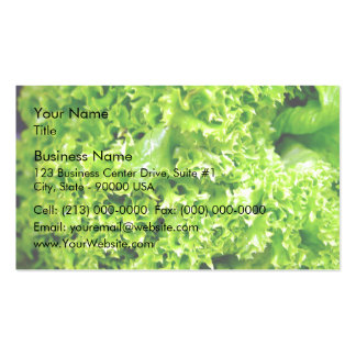 Green Hydroponic lettuce leaves Double-Sided Standard Business Cards (Pack Of 100)