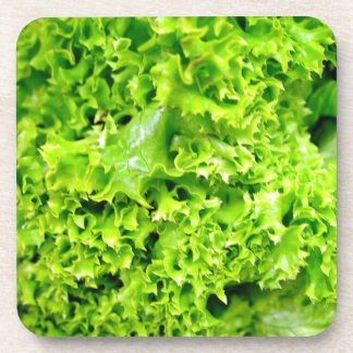 Green Hydroponic lettuce leaves Drink Coaster