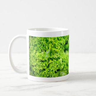Green Hydroponic lettuce leaves Coffee Mugs