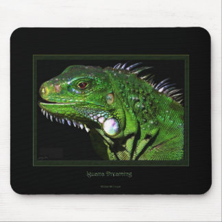 Green Iguana Collection Mouse Pad