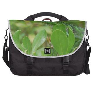 Green Iguana Bag For Laptop