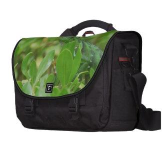 Green Iguana Laptop Bags