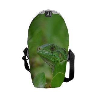 Green Iguana Courier Bag
