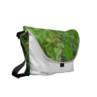 Green Iguana Courier Bags