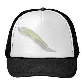 Green Iguana on White Cap Trucker Hat