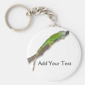 Green Iguana on White Keychain