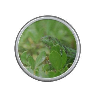 Green Iguana Bluetooth Speaker