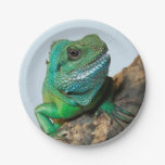 Green iguana paper plate