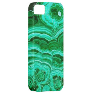 Green iPhone Case Case For iPhone 5/5S