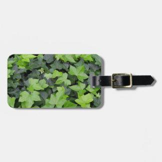Green Ivy Botanical Print Luggage Tag