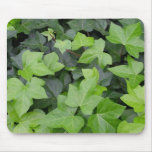 Green Ivy Botanical Print Mouse Pad