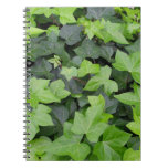 Green Ivy Botanical Print Notebook