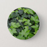 Green Ivy Botanical Print Pinback Button