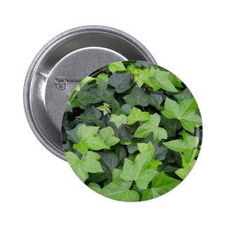 Green Ivy Botanical Print Pinback Button