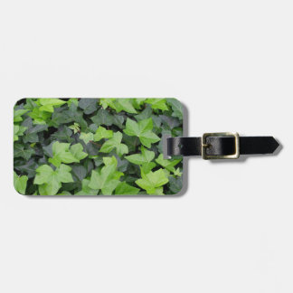 Green Ivy Botanical Print Tag For Luggage
