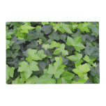 Green Ivy Placemat