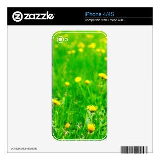 Green.jpg iPhone 4 Decal